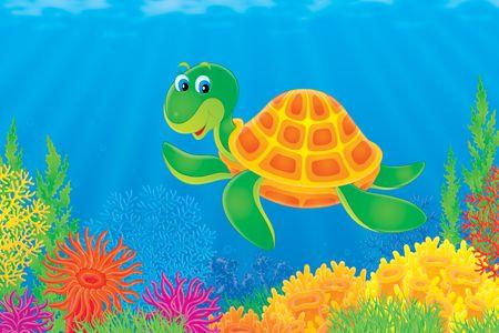 ocean floor: Turtle