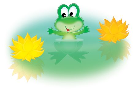 nenuphar: Green frog and water lily