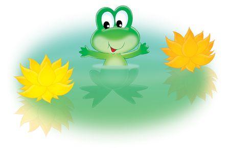 grenouille verte: Grenouille verte et arrosez le lis Banque d'images
