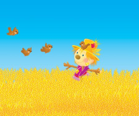 corny: Scarecrow and sparrows in a field Stock Photo