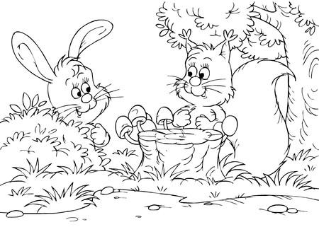 sump: Lepre e lo scoiattolo