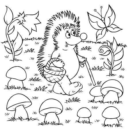 gathers: Riccio raccoglie funghi