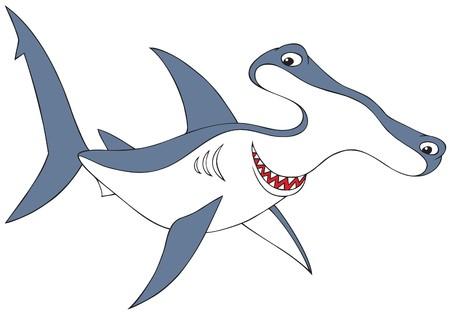 tiburones: Tibur�n de puntas en martillo
