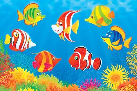 actinia: Peces tropicales por encima de un colorido arrecife de coral