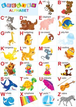 alphabet animaux: Alphabet anglais pour les enfants  Banque d'images
