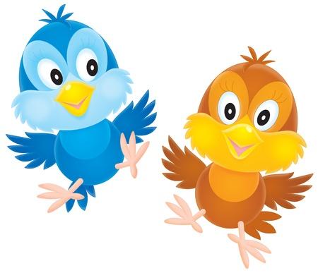 fledgeling: Nestlings