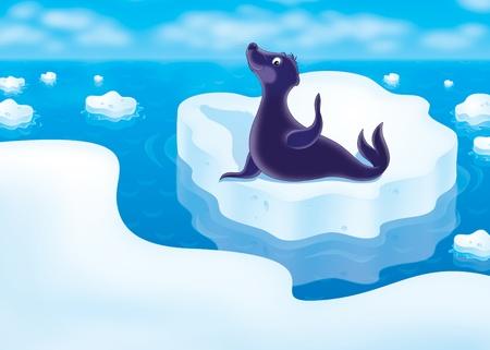 berg: seal on the drifting ice floe Stock Photo