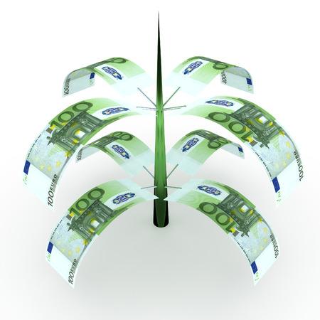 dinero euros: Árbol del dinero de los billetes en euros. Conceptos de negocio Foto de archivo