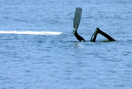flippers: Aletas de buceo buceador en el mar