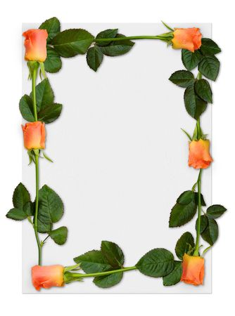 Sheet of paper with orange roses, love letter background border Stock Photo - 367689