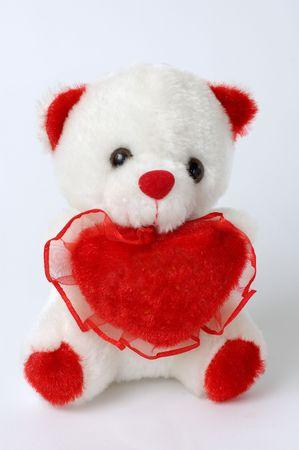 Cute white teddy bear photo