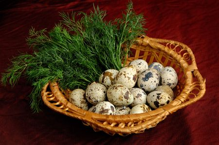 eastertide: Easter basket with quail eggs Stock Photo