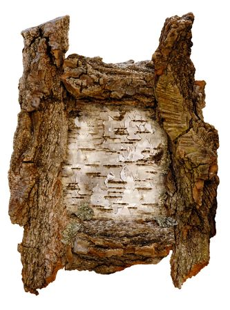 Birch tree bark picture border isolated on white Stock Photo - 392204