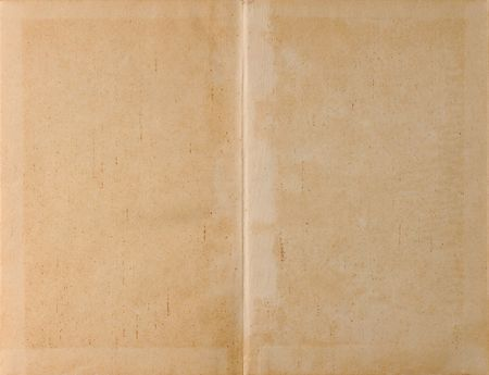 Unfolded old ancient book cover - parchment paper texture background photo
