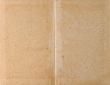 vintage parchement: Unfolded old ancient book cover - parchment paper texture background