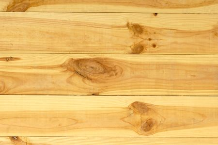 pinetree: Light pine-tree wooden boards wall texture background