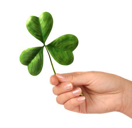 three leaved: Female hand holding shamrock leaf Saint Patricks Day celebration concept Isolated on white background