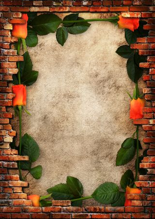 Roses on plaster wall background with brick wall framing photo