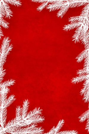 holiday background: Red Christmas background framed with white coniferous tree branches Stock Photo
