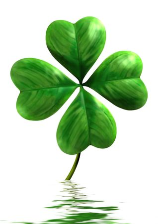 Four-leafed shamrock with reflection in water Symbol of luck and Saint Patrick Day holiday Isolated on white background Stock Photo