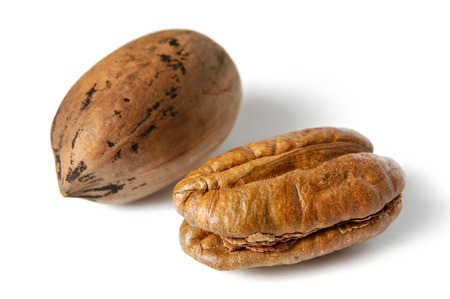pecans: Pecan nuts - Carya illinoinensis. Isolated on white background