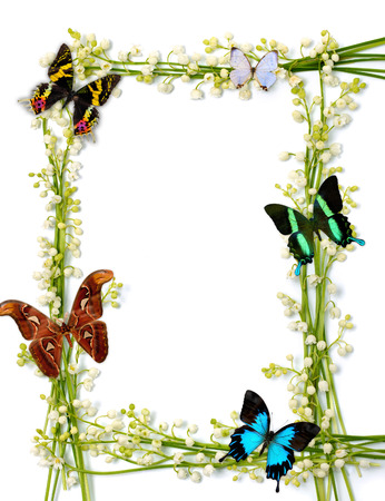 swallowtails: Lilies of the valley frames with colorful butterflies on white background