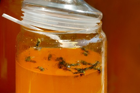 trap: Bees trapped in jar with honey