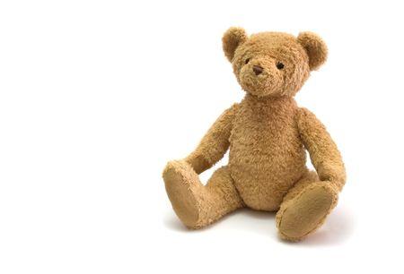 eddy: eddy bear against white background