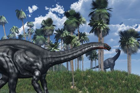 3D rendered prehistoric landscape featuring an apatosaurus dinosaur in the foreground, and a brachiosaurus at a distance. photo