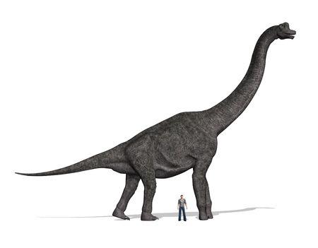 sauropod: Un dinosaurio de Brachiosaurus con un hombre de pie cercana para la comparaci�n de tama�o. En 40 a 50 pies de altura, que era un dinosaurio enorme!