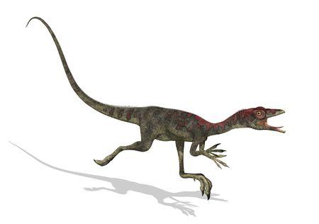 small reptiles: Rendering 3D di un dinosauro compsognathus in fuga. Questo dinosauro era la dimensione di un tacchino e visse durante il tardo periodo Giurassico. Archivio Fotografico