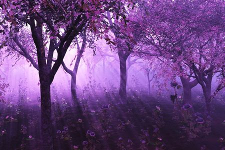 A misty morning among flowering trees - 3D render. Stock Photo