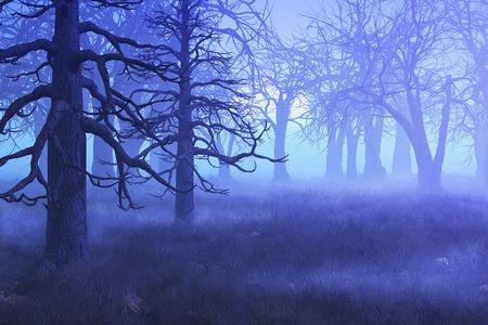 rendering: A mist settles over a forest on an early spring morning - 3D render with digital painting.