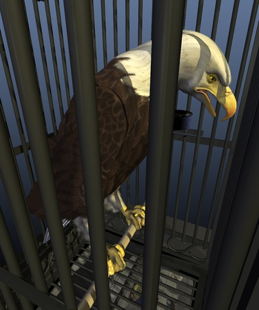 inmate: A bald eagle, the national bird of the USA, is confined to a cage - 3D render with digital painting. Here in the Land of the Free one out of every 100 adults is serving time in jail or prison.