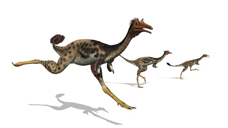 long lived: Three mononykus dinosaurs on the run. These dinosaurs were only 3.3 feet long, they moved on two legs and could run at very high speeds. They lived during the late Cretaceous period, around 70 million years ago. 3D render.