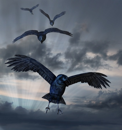 Crows coming in for a landing against a dark sky Stock Photo
