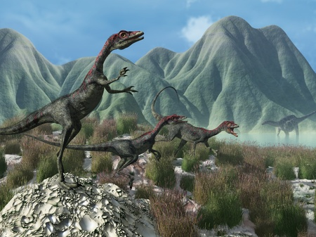 An afternoon prehistoric scene with three compsognathus dinosaurs on the run - 3D render.