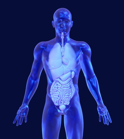 3D render depicting a transparent glass man with internal organs.