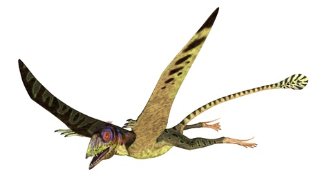 triassic: 3D render depicting a Peteinosaurus flying. Stock Photo