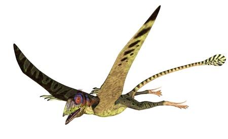 depicting: 3D render depicting a Peteinosaurus flying. Stock Photo
