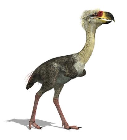 """przodek: Ten duży, nielot mięsożerny ptak żył 27.000.000 - 15.000 lat temu. Phorusrhacos, 'Ptak Terror """"aka był 8 metrów wysokości i miał dziób tak duży, jak na głowę konia. 3D render. Zdjęcie Seryjne"""
