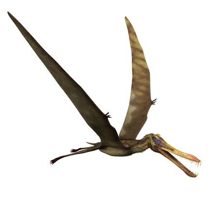 dinosaurio: El Anhanguera era un dinosaurio que vivi� durante el per�odo Cret�cico en Brasil - 3D rinden. Foto de archivo