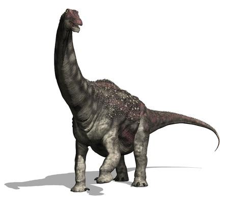 dinosauro: Il diamantinasaurus era un dinosauro molto grande (52 metri di lunghezza), che ha vissuto durante il periodo Cretaceo - render 3d. Archivio Fotografico
