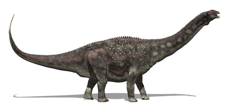 long lived: The diamantinasaurus was a very large dinosaur (52 feet long) that lived during the Cretaceous Period - 3d render.