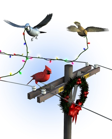 jay: Birds Decorating for Christmas - 3D render