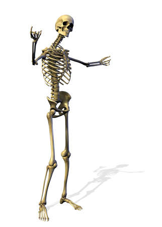 orthopedics: Welcoming Skeleton - 3D render Stock Photo