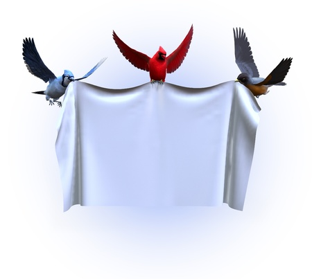 jay: 3D render of birds holding up a blank banner. Stock Photo