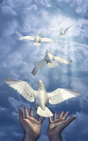 renders: Releasing the Doves - combination of 3d renders, digital photos and digital painting.