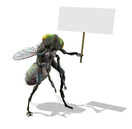 exterminate: 3D render of a giant fly holding a blank sign.
