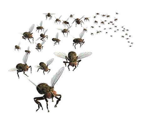 mouche: 3D rendent d'un essaim de mouches - elles sont dirig�es � votre fa�on!